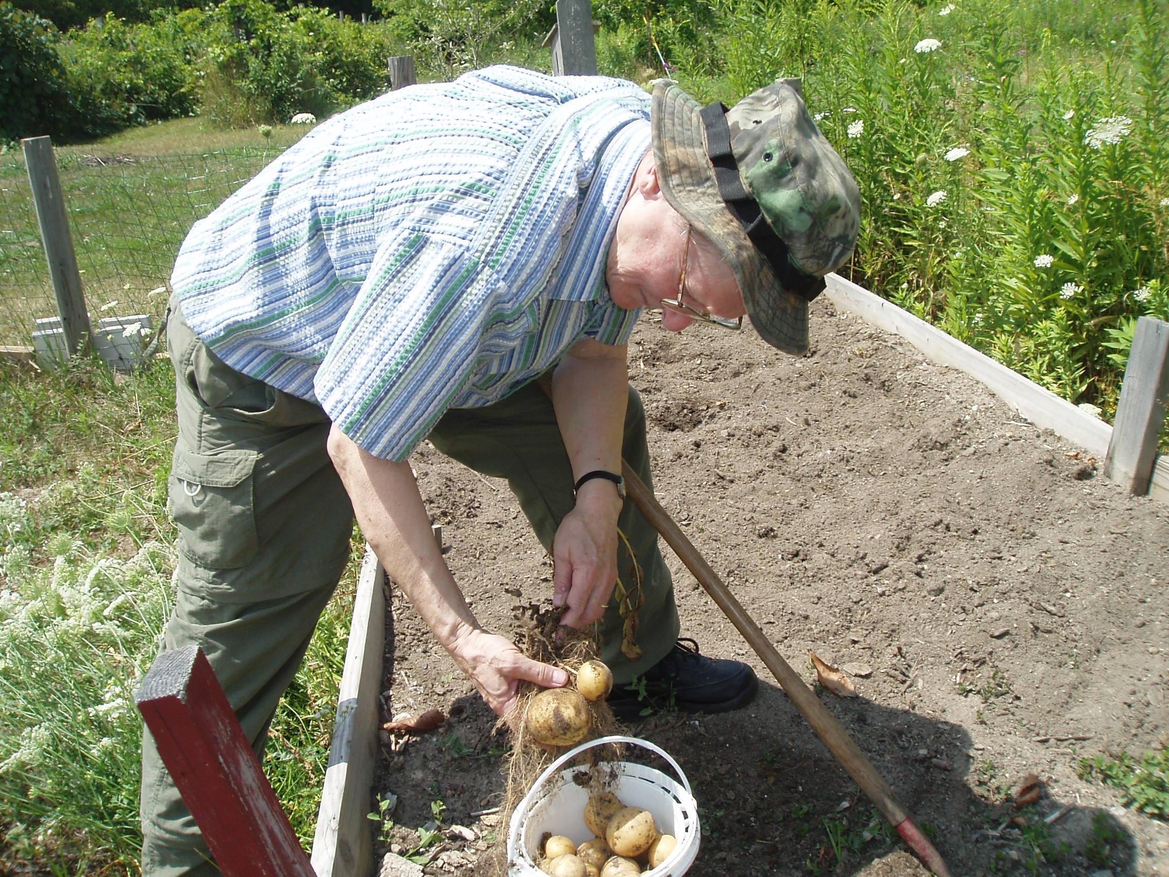Sister Judith Kirt digging in the dirt