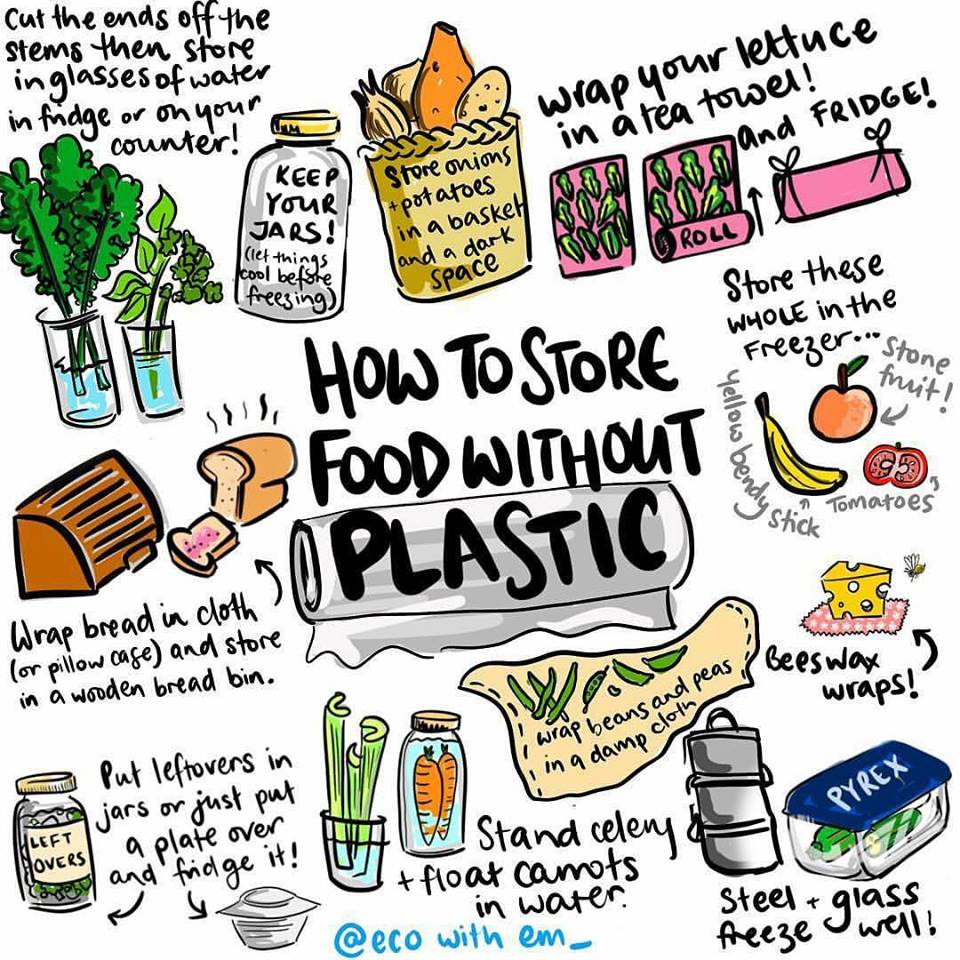 eco-friendly food storage  sc 1 st  Dominican Sisters & Care of Creation Committee: Commit to Use Less Plastic - Dominican ...